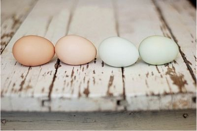 Pastel-easter-eggs-arosyoutlook-rosy-outlook